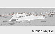 Gray Panoramic Map of Samroung