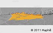 Political Panoramic Map of Samroung, desaturated