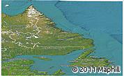 Satellite Panoramic Map of Newfoundland and Labrador