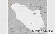 Gray 3D Map of Bamingui