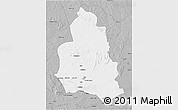 Gray 3D Map of Ippy
