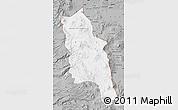 Gray Map of PARINACOTA
