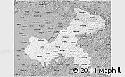 Gray 3D Map of Chongqing