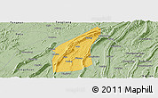 Savanna Style Panoramic Map of Bishan
