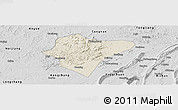 Shaded Relief Panoramic Map of Dazu, desaturated