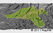 Satellite Panoramic Map of Jiangjin, desaturated