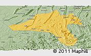 Savanna Style Panoramic Map of Jiangjin