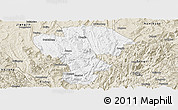 Classic Style Panoramic Map of Qijiang