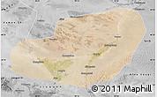 Satellite Map of Jinta, desaturated