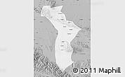 Gray Map of Shandan
