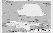 Gray Panoramic Map of Subei
