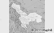 Gray Map of Tianzhu