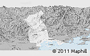 Gray Panoramic Map of Raoping