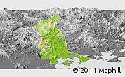 Physical Panoramic Map of Raoping, desaturated