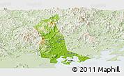 Physical Panoramic Map of Raoping, lighten