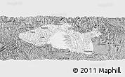 Gray Panoramic Map of Bama