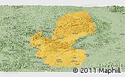 Savanna Style Panoramic Map of Chongzuo