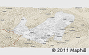Classic Style Panoramic Map of Daxin