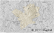 Shaded Relief 3D Map of Fengshan, desaturated