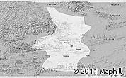 Gray Panoramic Map of Fusui