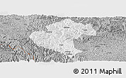 Gray Panoramic Map of Napo