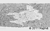 Gray Panoramic Map of Tian E