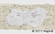 Classic Style Panoramic Map of Tianlin