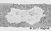 Gray Panoramic Map of Tianlin
