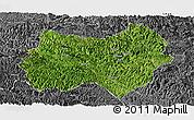 Satellite Panoramic Map of Tianlin, desaturated