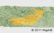 Savanna Style Panoramic Map of Tianyang