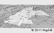 Gray Panoramic Map of Dafang