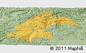 Savanna Style Panoramic Map of Dafang