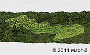 Satellite Panoramic Map of Jinsha, darken