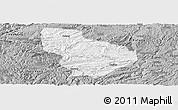Gray Panoramic Map of Nayong