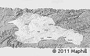 Gray Panoramic Map of Weining
