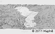 Gray Panoramic Map of Zhenning