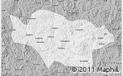 Gray Map of Longhua