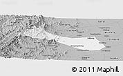 Gray Panoramic Map of Neiqiu