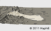 Shaded Relief Panoramic Map of Neiqiu, darken