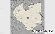 Shaded Relief Map of Longjiang, darken, desaturated