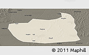 Shaded Relief Panoramic Map of Tailai, darken