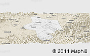 Classic Style Panoramic Map of Guangfen