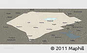 Shaded Relief Panoramic Map of Da An, darken