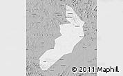 Gray Map of Hailong