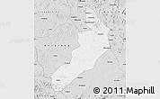 Silver Style Map of Hailong