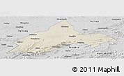 Shaded Relief Panoramic Map of Liuhe, desaturated