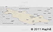 Shaded Relief Panoramic Map of Taoan, desaturated