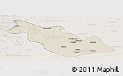 Shaded Relief Panoramic Map of Taoan, lighten