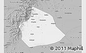 Gray Map of Beizhen