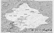 Gray Panoramic Map of Chaoyang